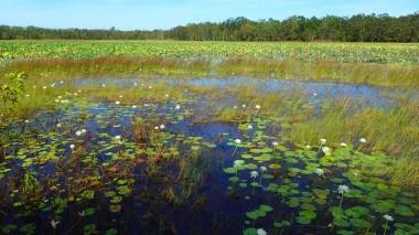 Marmaluka wetland from the viewing platform