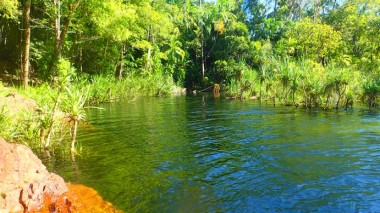 A quieter side of Wangi's plunge pool