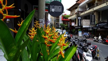 A bit of green and colour among sombre urban Legian