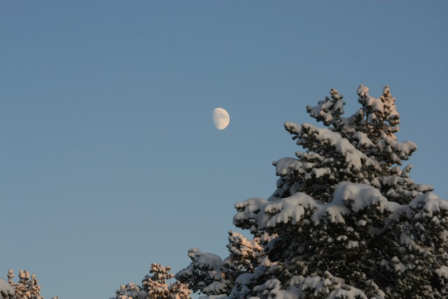 The moon still appears and looks ethereal in the frozen sky
